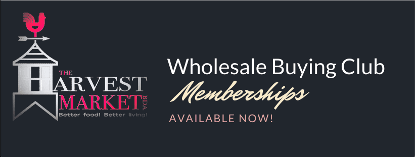 Memberships (Available now)