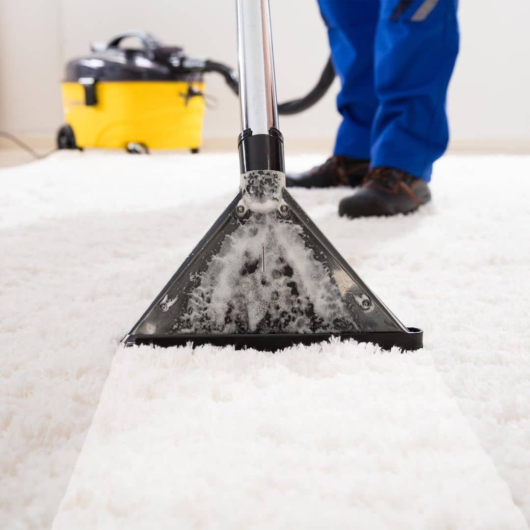 Carpet, Sofa & Mattress Cleaning image