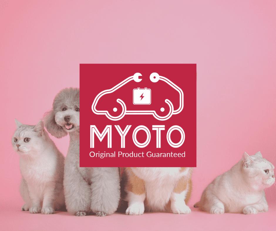 MYOTO Pet World image