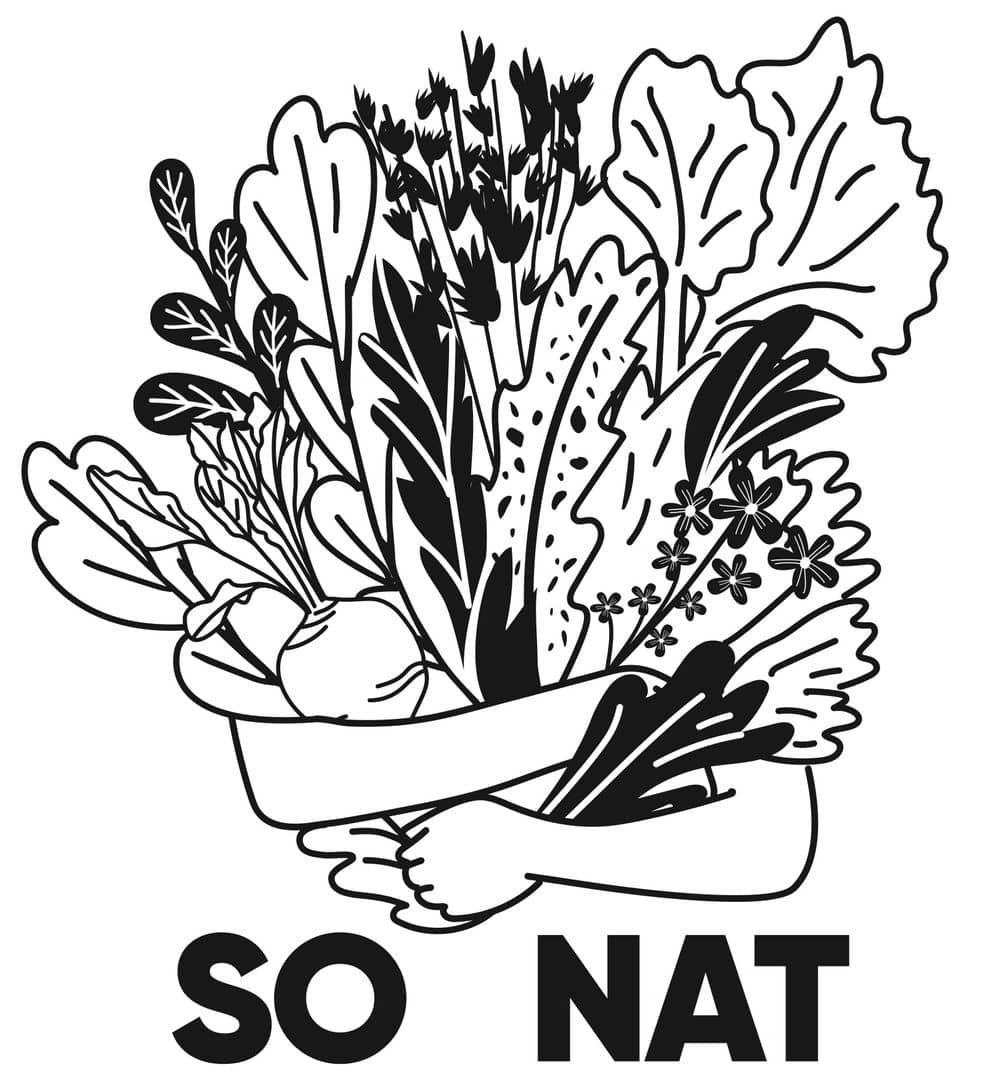 SO NAT image