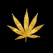 Express ReLeaf logo