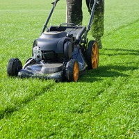 Lawn Mowing image