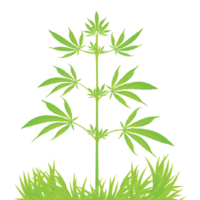 Cultivators image
