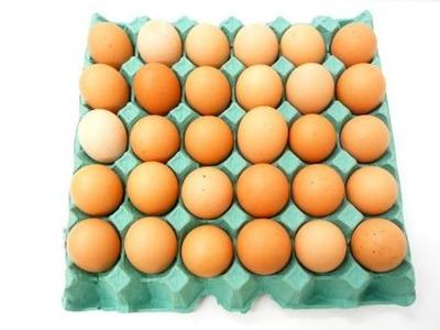 Eggs 30 Pcs image
