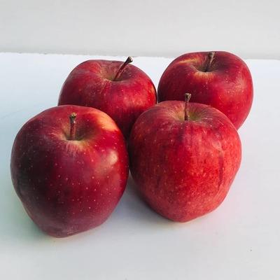 सेब / Apple - Kinnor 500 G image