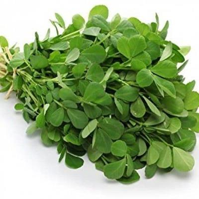 Fenugreek Leaves (Methi) 500GM image