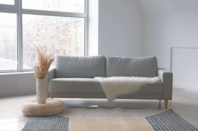 Living Rooms - Carpet shampoo (40 mins) image