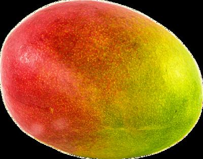 Mangue grosseur 10 (unité) image