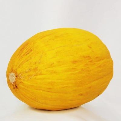 Melon canaris-Golden grosseur 6 (unité) image