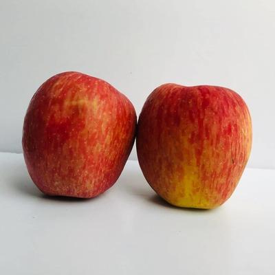 सेब / Apple - Kashmir 1kg image