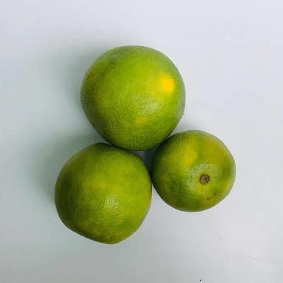 मोसंबी / Sweet Lemon 1 KG image