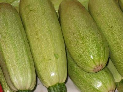 Calabacín blanco ecológico (Kg) image
