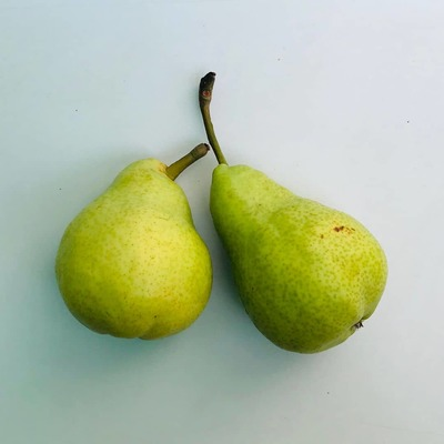 Pears Imported 1 KG image